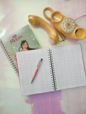 Salon Appointments Book / Diary