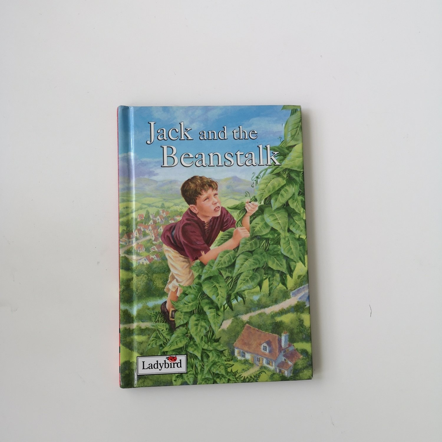 Jack and the Beanstalk Notebook