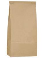 Kraft 1lb/16oz PLA Lined Tin Tie Bag - 1,000/case