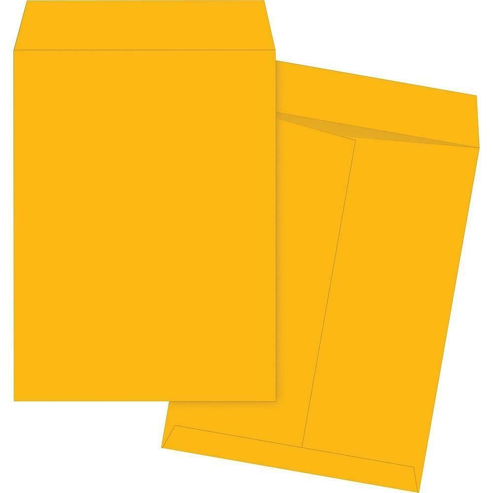"Quality Park Envelopes Kraft Catalogue 17"" x 22"", 25/Pack - Non-Adhesive"