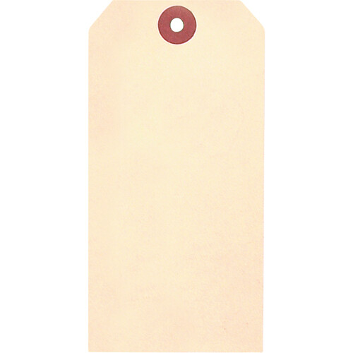 Blank Cardstock Tags, Hole with Wire, Manila, 100 Pack