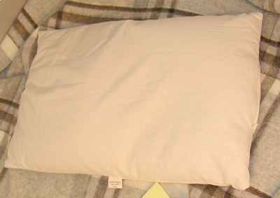 Cuscino in Pula di Miglio Bio 40 x 40