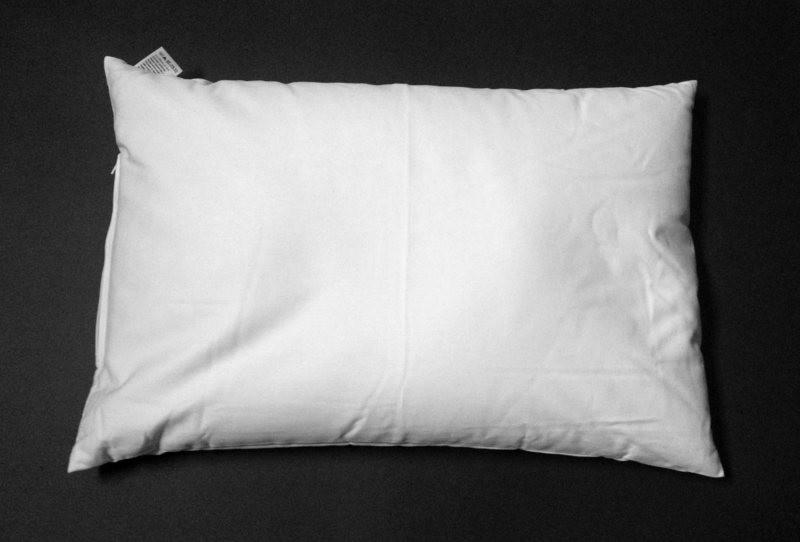 Cuscino in Pula di Miglio Bio 40 x 60