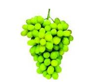 Seedless Green Grapes 2lb