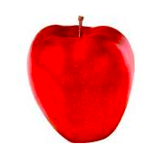 Red Delicious Apple 4 ct