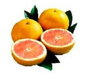 Star Red Grapefruit 2 ct
