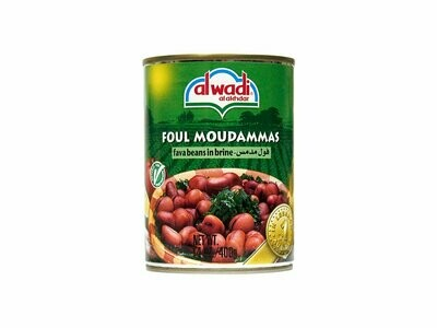 Al Wadi Fava Beans in Brine 14 oz tin