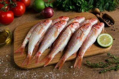 Temizlenmis Tekir Red Mullet - gutted by Fish Avenue (frozen) 16 oz