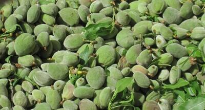Cagla ~ Fresh Almond 1lb