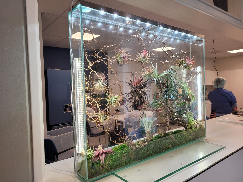 Set kweeklampen L80 voor florapanels