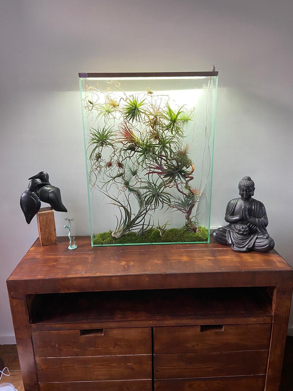 Set kweeklampen L60 voor staand florapanels