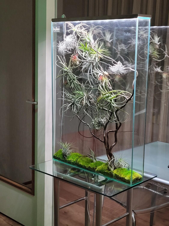 Florapanel staand/ 80x60x10 cm/ excl. kweeklampen en voet