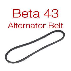 Belt for Beta 43-50 - v-belt or multi-groove