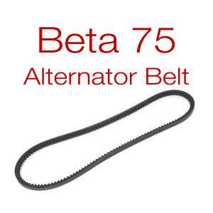 Belt for Beta 75 - v-belt or multi-groove