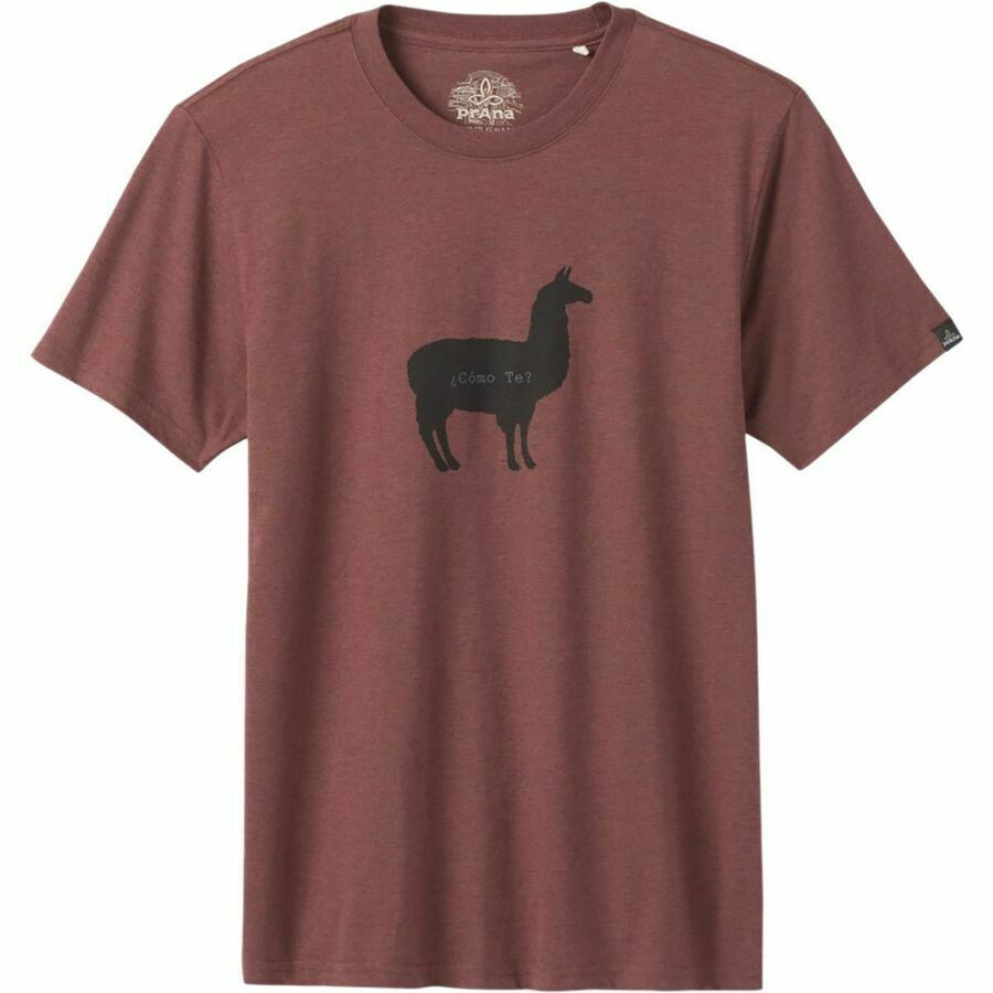 prAna Como Te Llama Journeyman Tee Shirt