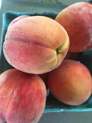 Hamilton Orchard PP yellow peaches (2 lbs)