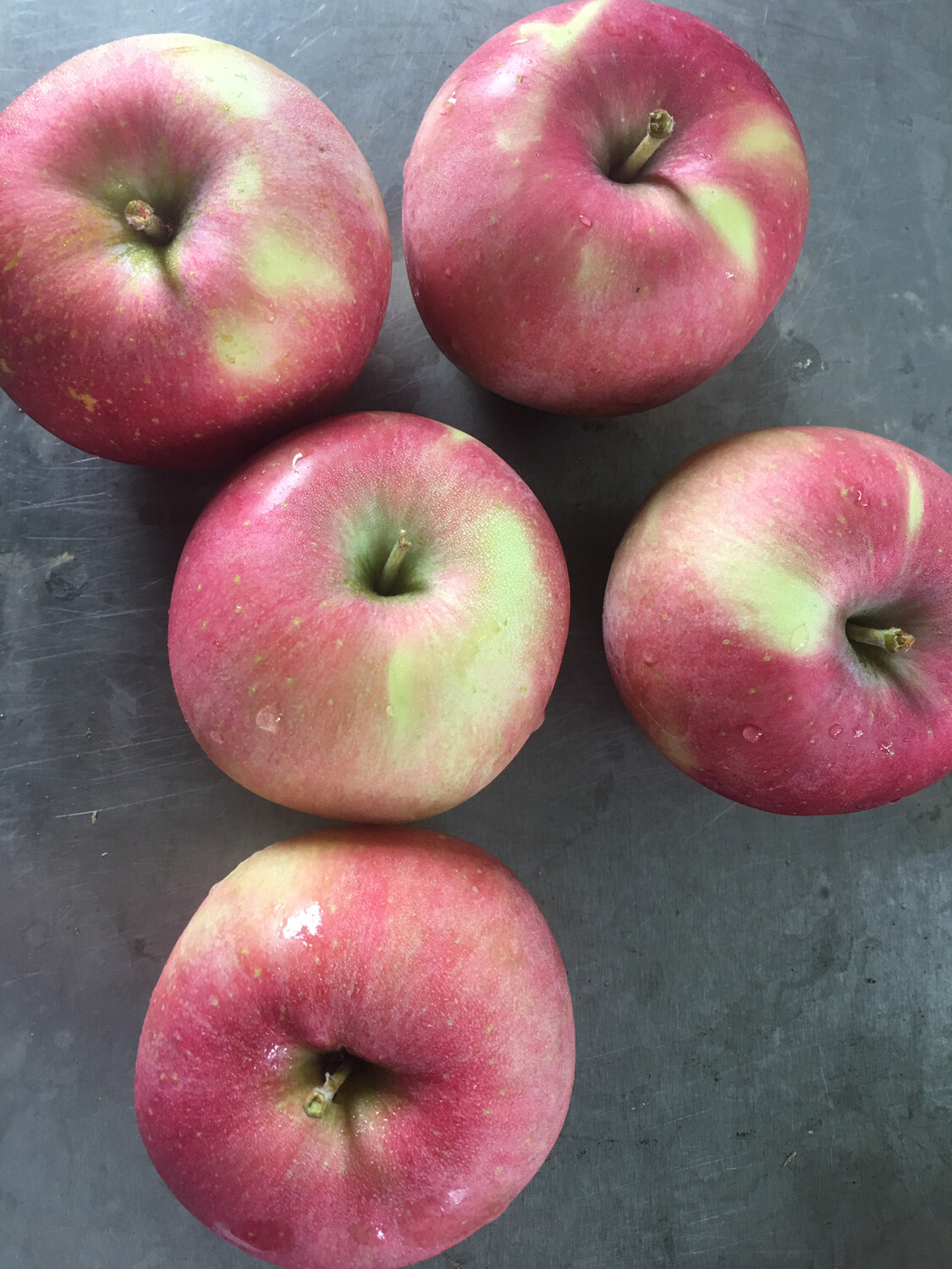 Hamilton Orchard apples (3-1/3 pounds)PP