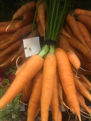 Lancaster organic orange carrots