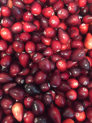 Lancaster Farm Fresh IPM Fresh Cranberries (1/2 lb)