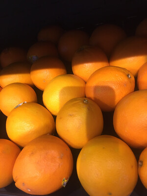 California organic navel oranges (5)