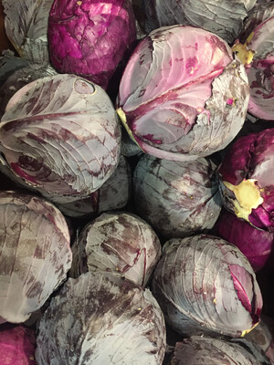 Lancaster Farm Fresh red cabbage