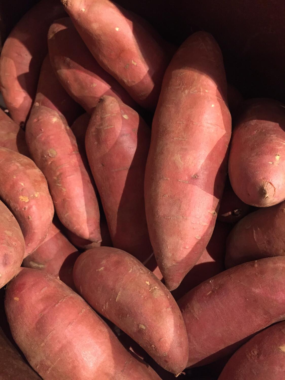 Lancaster Farm Fresh sweet potatoes(2 lbs)