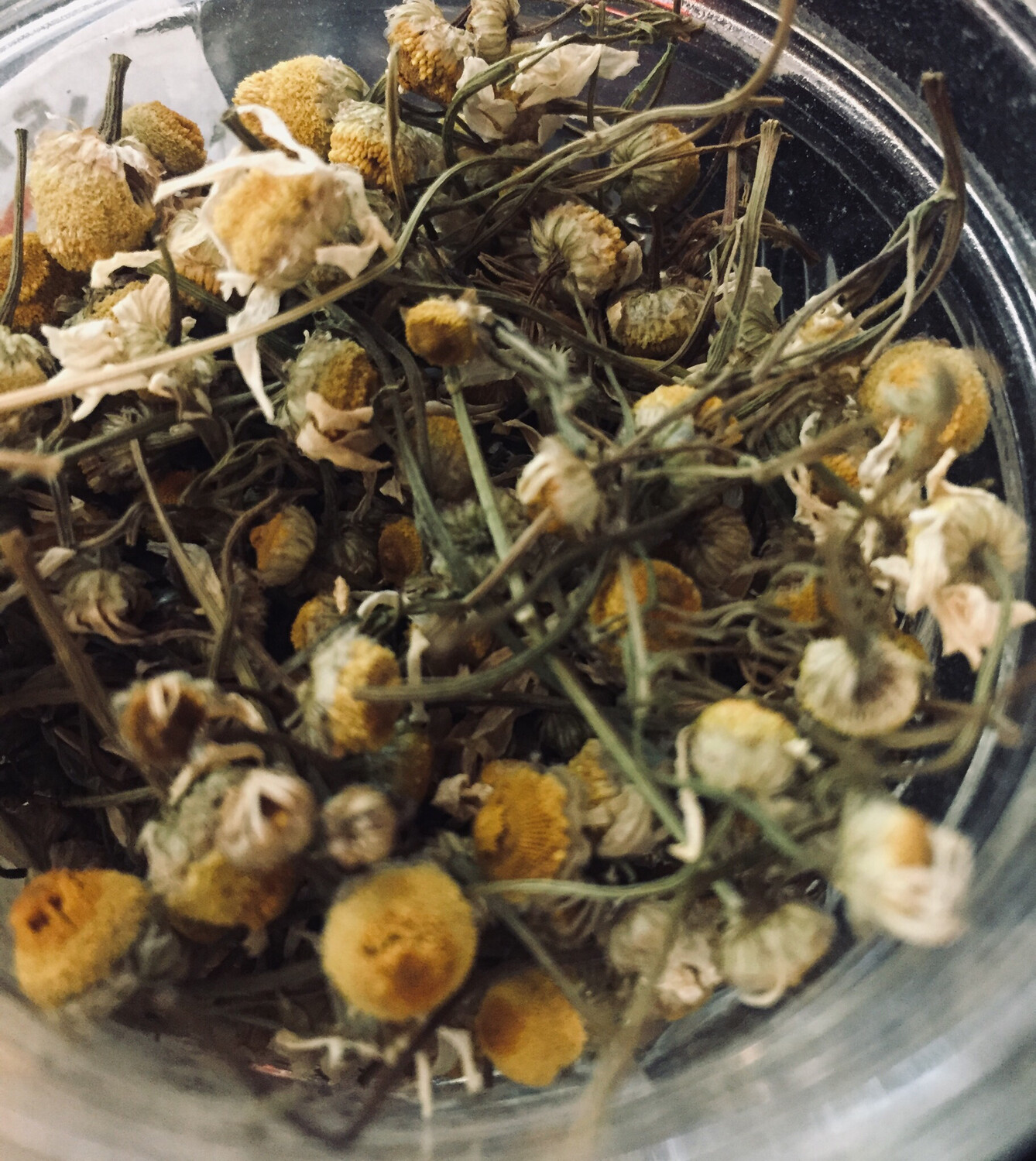 Tooth Of The Lion Dried Chamomile Tea PP