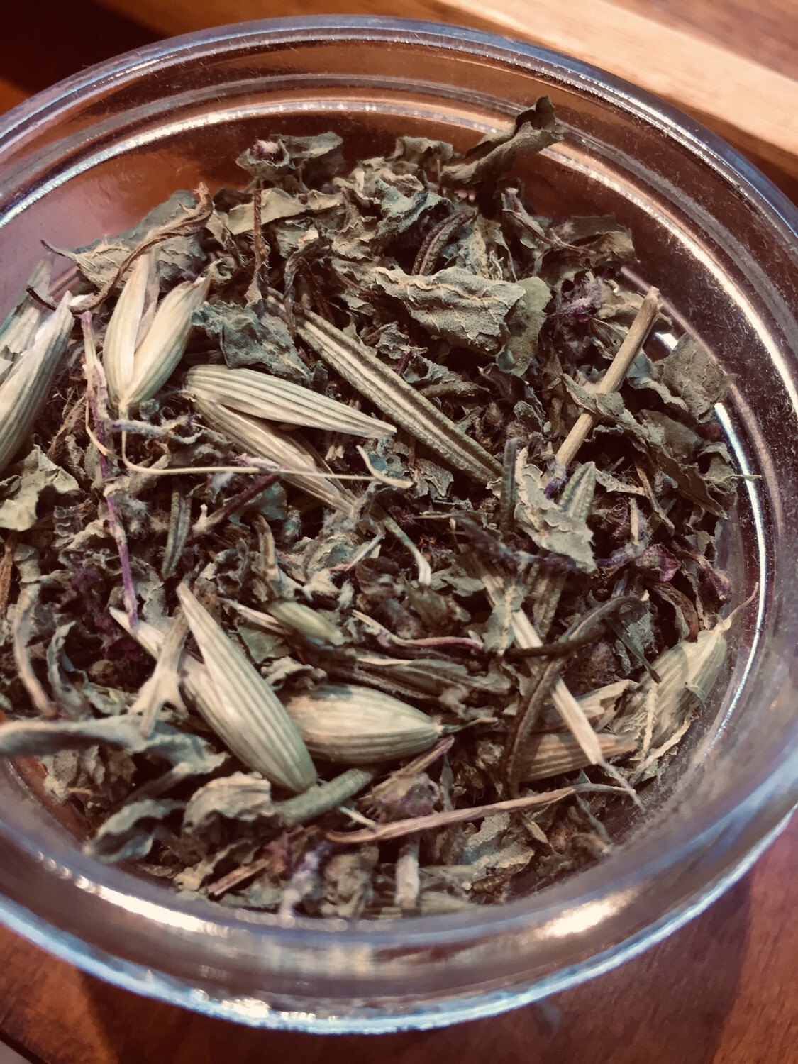 Tooth of the Lion Dried Ocimum tea PP