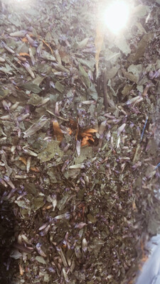 Tooth Of The Lion Anise-Mint Tea Blend