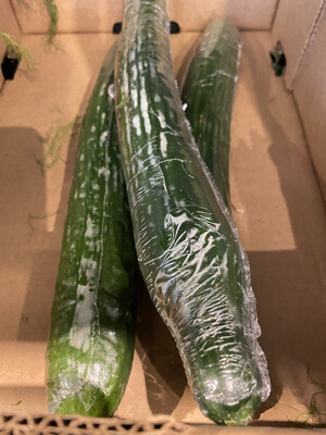Cucumber seedless, greenhouse Canada grown