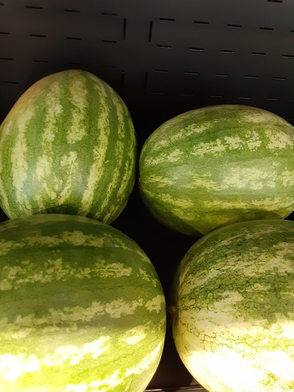 OG mini red seedless watermelon