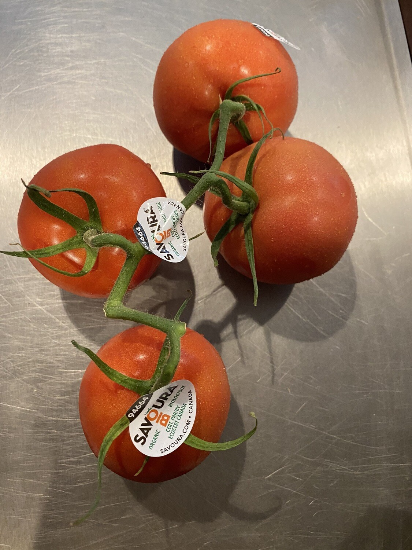 Tomatoes, OG vine Greenhouse Canada(1.5 lbs)