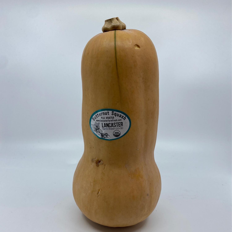 Lancaster Farm fresh OG  Butternut Squash