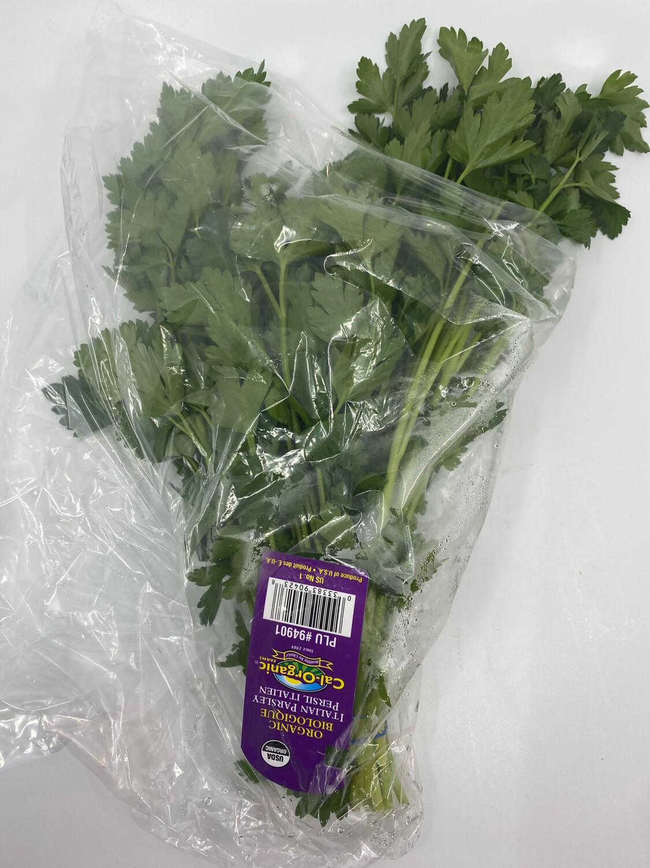 Organic cilantro bunch