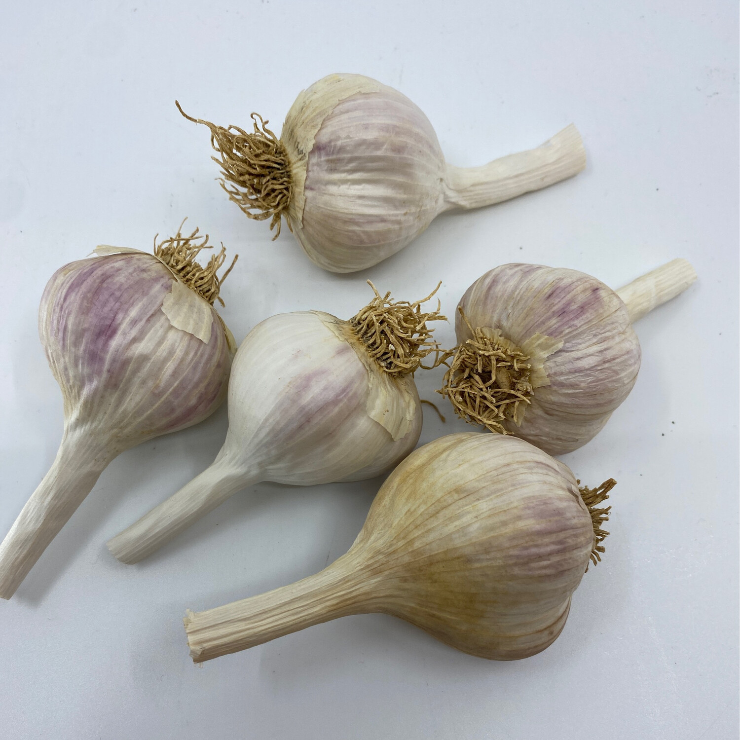 Good Work Farm Organic, not certified Hardneck Garlic (1/2 lb)