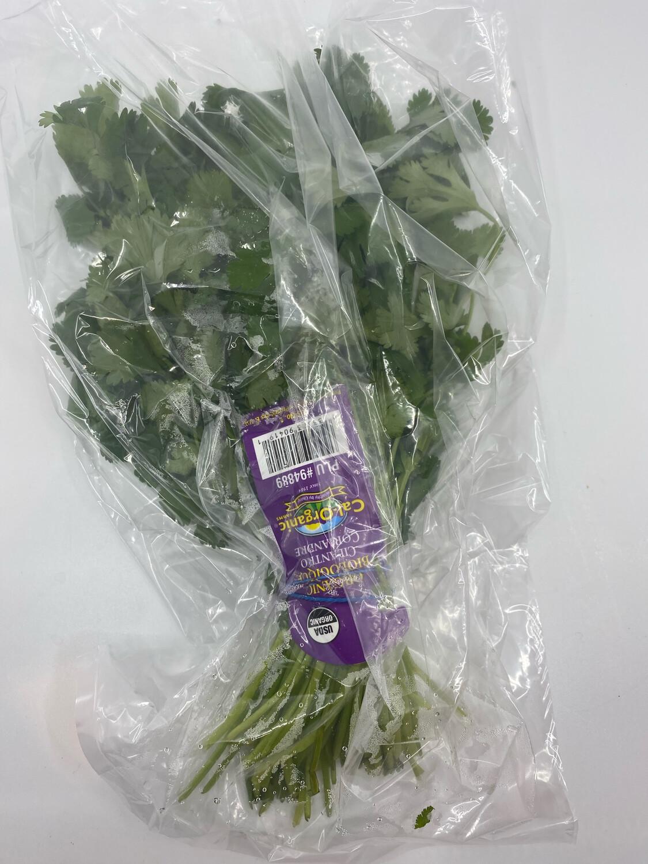 Organic parsley bunch