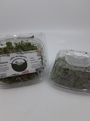 Valley Microgreens Rainbow mix PP organic, not certified 1.5 ounce