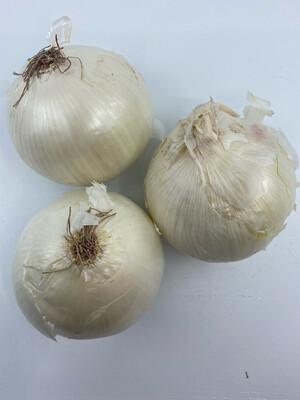 Texas white onions (2 pounds)