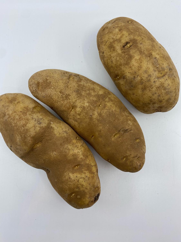 Russett  potatoes OG (2lbs)
