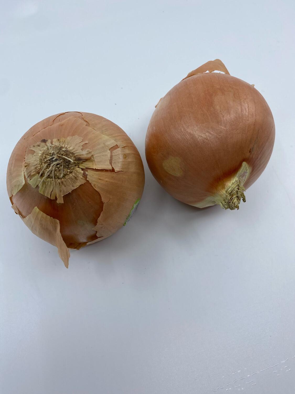 Organic sweet yellow Onion - one pound