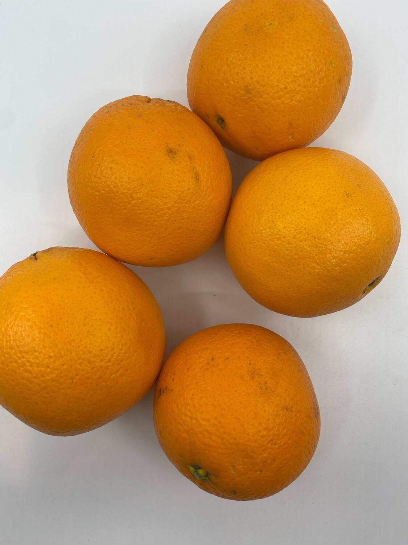 California organic navel oranges (5)