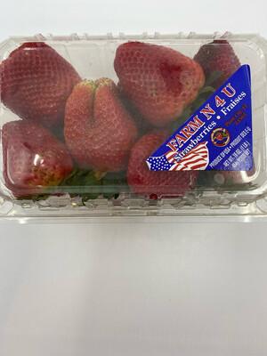 Florida Strawberries 1 lb clamshell