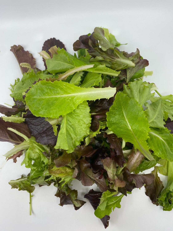Lancaster Farm Fresh OG specialty lettuce mix (1/3 lb)