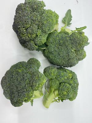 organic broccoli crowns (1-1/2 lbs)