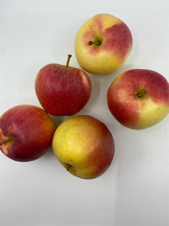 Hamilton Wind Hill Orchard PP IPM Fuji apples (2 lbs)