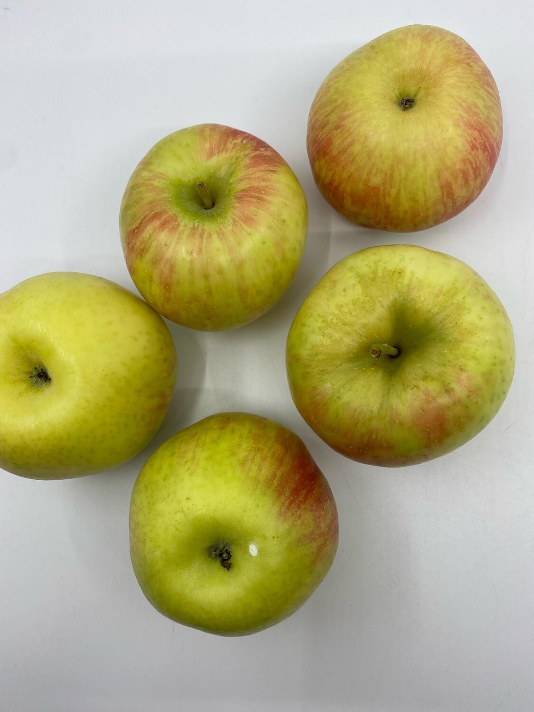 Hamilton Wind Hill Orchard PP IPM honey crisp apples (2 lbs)