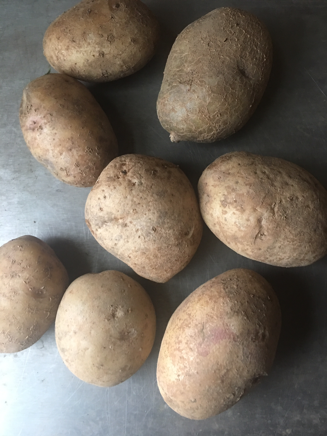 Russett  potatoes OG (2lbs)