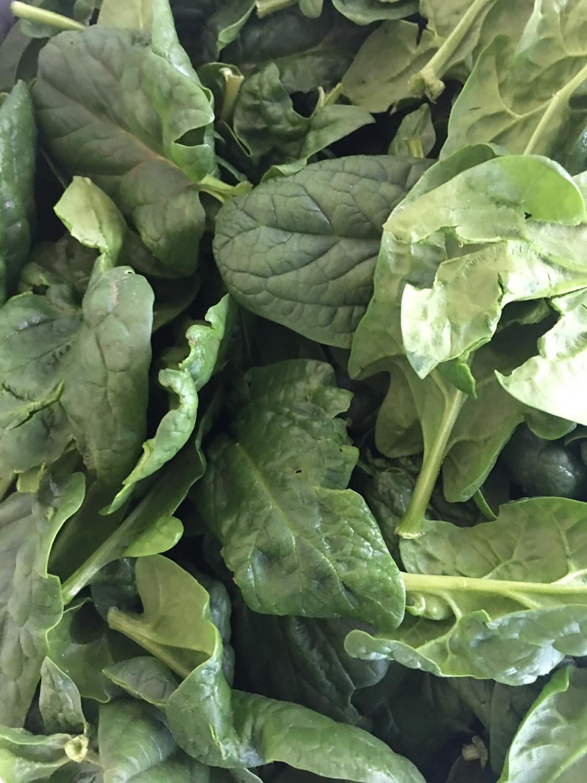 Organic baby's Spinach (1/2 lb bag)