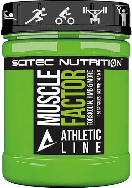 Muscle Factor Scitec Nutrition