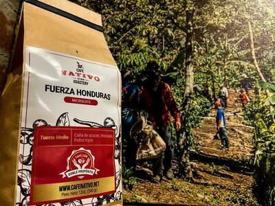 MICROLOTE FUERZA HONDURAS (REGION MONTECILLOS)